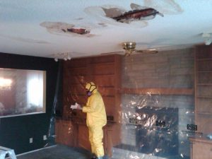 Hazmat Technician Preparing To Remove Hazardous Asbestos From Roof