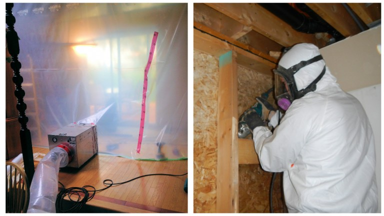 Hazmat technician cutting wall to remove mold