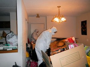 Mayken Workers Sorting Through Trash And Cleaning Distressed Hoarders Property