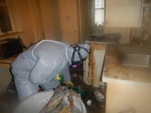 Extreme Cleaning Distressed Property At Dirty Hoarding House
