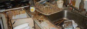 Hazardous Cleaning, Distressed Properties & Hoarders