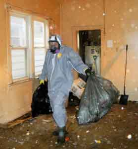 Prtotection From Health Hazards - Hoarder Cleanup