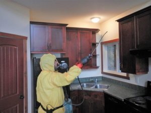 disinfecting kitchen cupboards